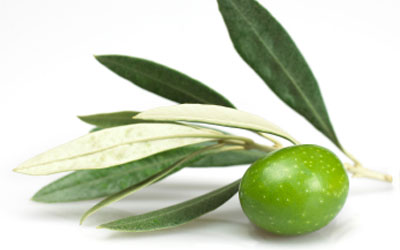 Varietal Extra Virgin Olive Oil