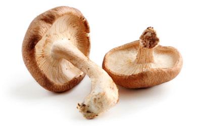 infused-oil-mushroom
